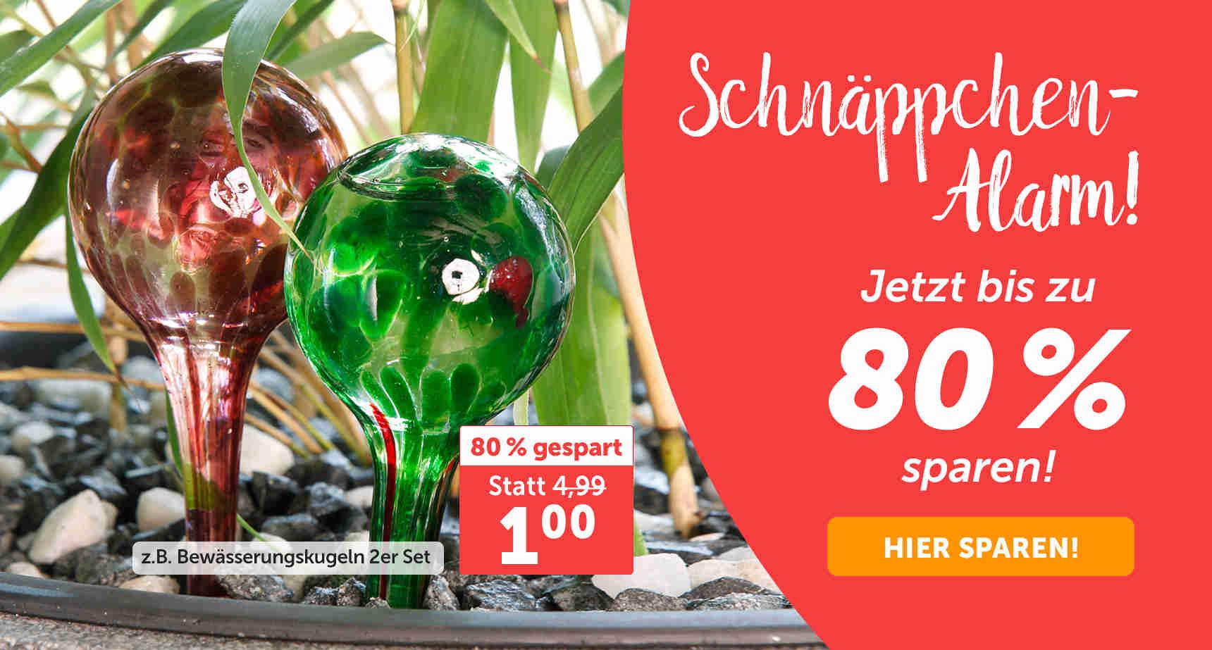 +++ (1) Schnäppchen-Alarm +++ - 3