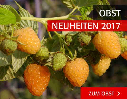 + (3) Neuheiten Obst +