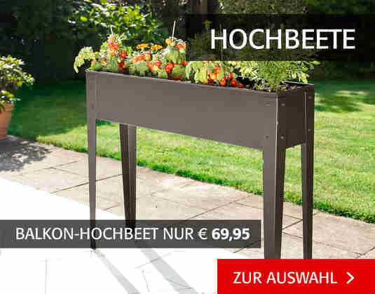 + (3) Hochbeete +