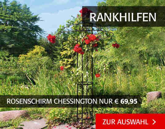 + (2) Sonnenschutz +