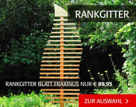 + (3) Rankgitter +