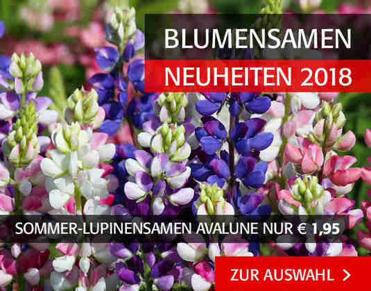 + (3) Blumensamen +
