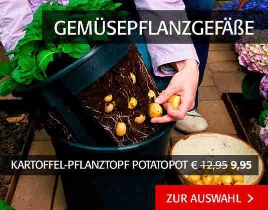 + (1) Gemüsepflanzgefäße +