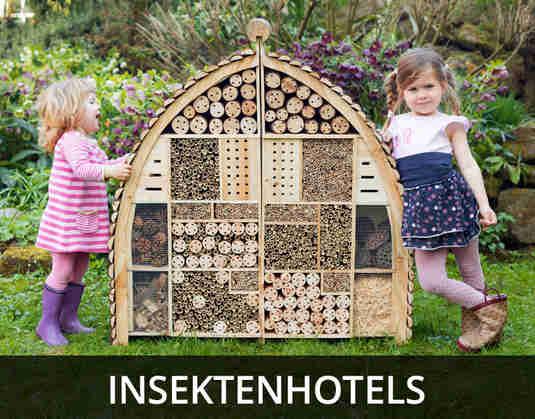 + (3) Insektenhotels +
