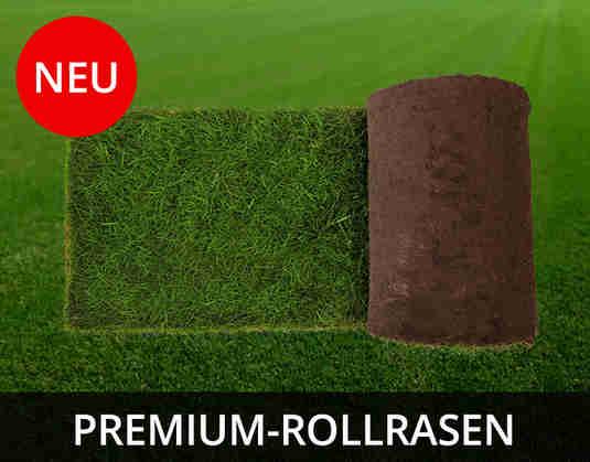 + (4) Rollrasen +