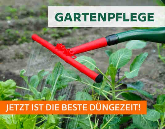 + (2) Gartenpflege +