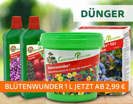 + (3) Dünger +
