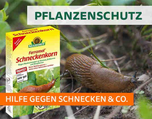 + (2) Pflanzenschutz +