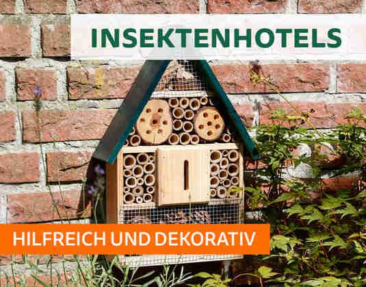 + (4) Insektenhotels +