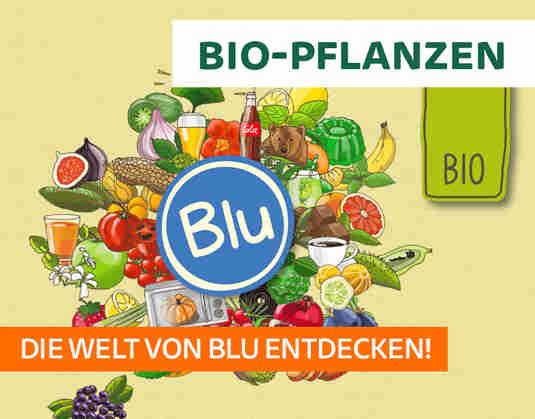 + (4) Bio-Pflanzen +