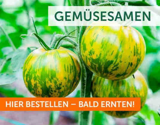 + (2) Gemüsesamen +