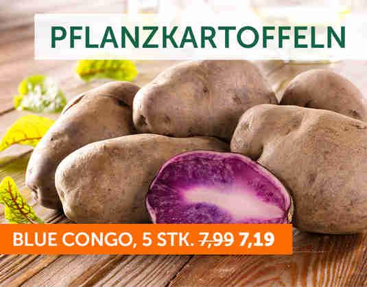 + (1) Kartoffeln +