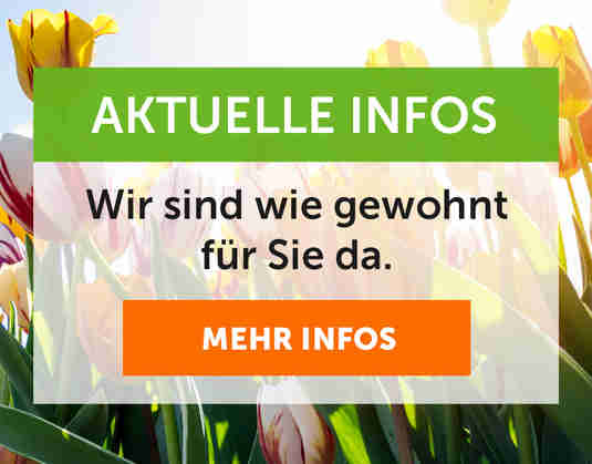 + (1) Aktuelle Info +