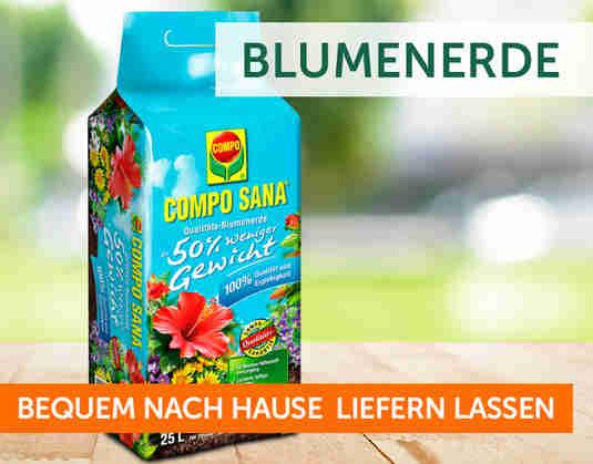 + (3) Blumenerde +