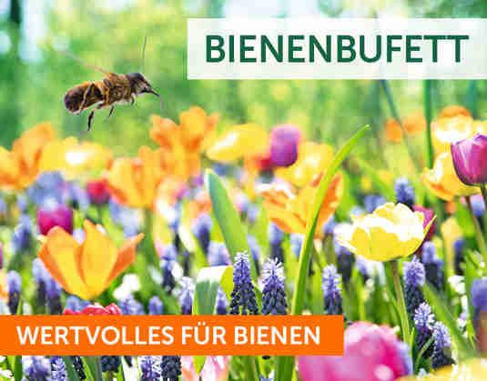 + Bienenbufett +