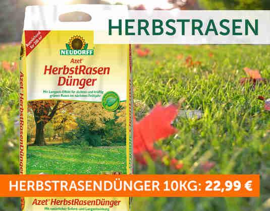 + Herbst-Rasendünger +