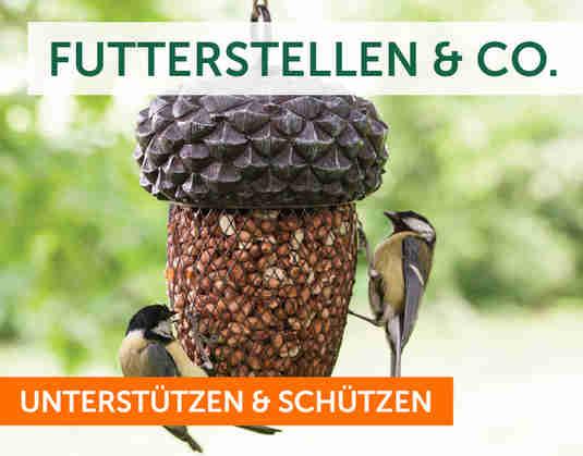 + Naturschutz +