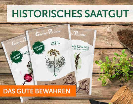 + Historisches Saatgut +