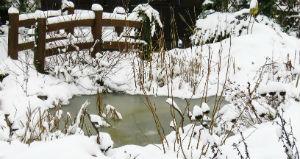 Gartenteich im verschneiten Garten
